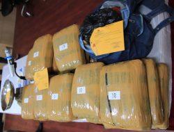 Dari Hasil Pengembangan Polisi Gagalkan Peredaran Ganja 36 Kilo